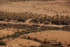 ...Oued-Querungsmöglichkeit belohnt,...