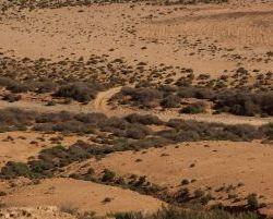 Marokko_2012_0325