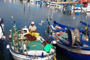 Im Fischerhafen von Alghero...