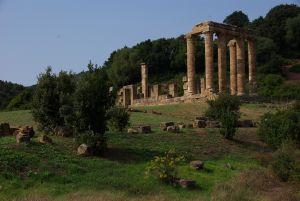 zum Tempio di Antas begleiten uns viele...