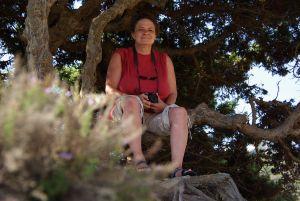 zum Verweilen auf einer Baumbank ein.