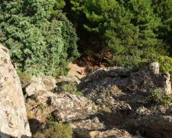 Sardinien_2011_1015
