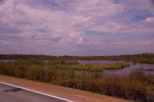 Westsibirien: Wasser, Sumpf, Wald...