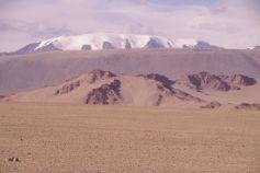 """Auf der Strecke nach Darwi, der 4208m hohe """"Zuckergussberg"""" Tsambagarav"""