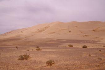 Am Schluss der Dünenkette, die mit ca. 200 m höchste Düne