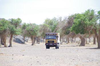 Die Wüste ruft! Die Gobi, ihre Highlights und Unwegbarkeiten