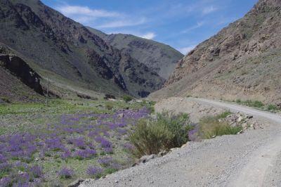 Die gute Piste nach Tsagaannuur durch einen Bergeinschnitt entschädigt für die Strapazen der Flussquerung
