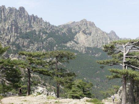 Blick vom Col de Bavella