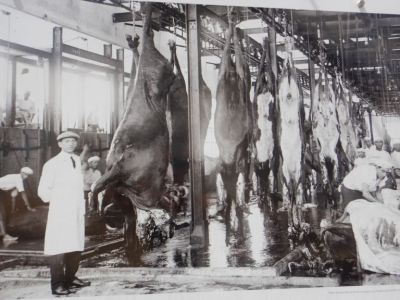 Hier die Grundlage für 1 kg Fleischextrakt (Brühwürfel): 32 kg Rind