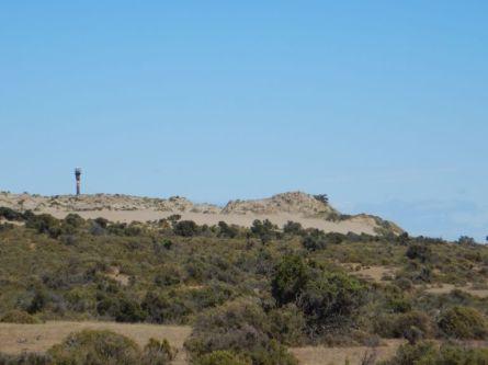 Punta de Norte - der nördlichste Punkt von Valdes,...