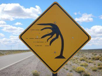 Auf Pisten durch das stürmische Ost-Patagonien bis San Julian