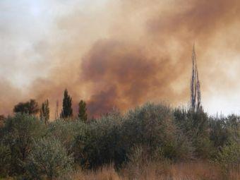 Nach drei Tagen über 30°C: Ein Buschfeuer...