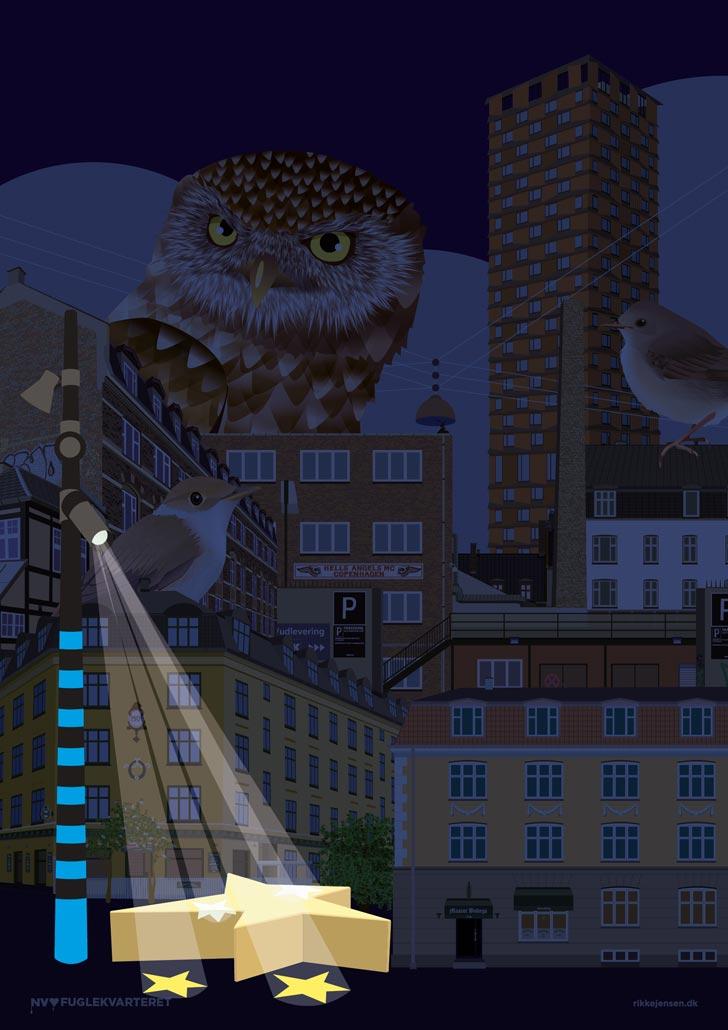 Mørkevandring i Fuglekvarteret