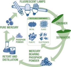 Lamp & Fixture Recycling  rileyelectricalsupply