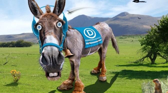 Beyond salvation? Democratic party politics on Blog#42