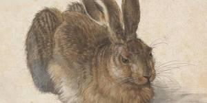 Albrecht Dürer: Einzigartige Werkschau in der Albertina