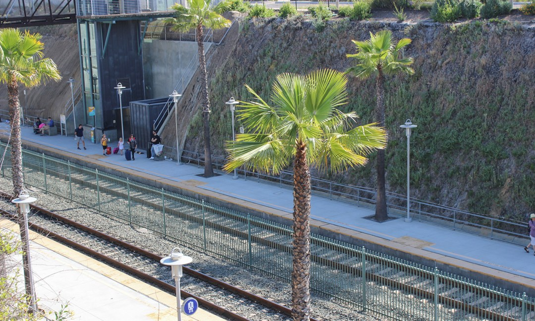 Train tracks with palm trees lining it and people waiting.