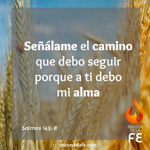 Citas bíblicas de buenos días