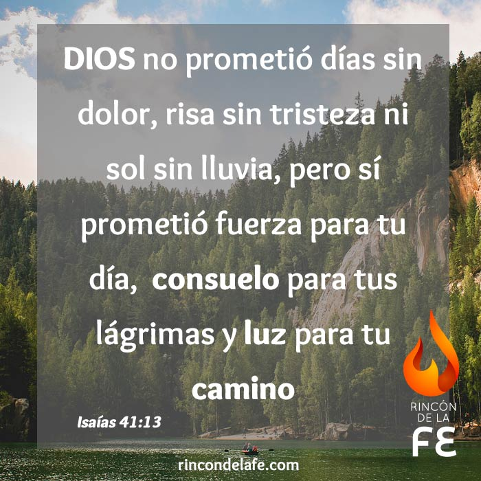 Frases Cristianas De Animo Por Fallecimiento Sitio Torrent