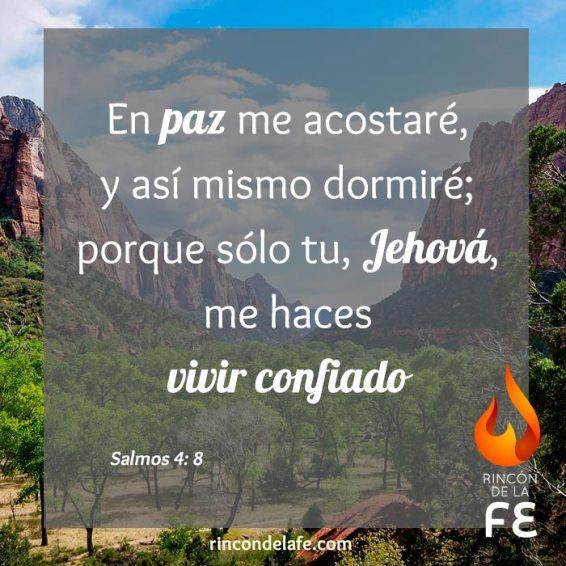 Citas de la Biblia para animar a una persona
