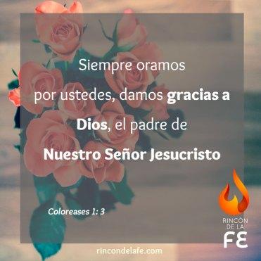 Imágenes y versículos bíblicos de acción de gracias
