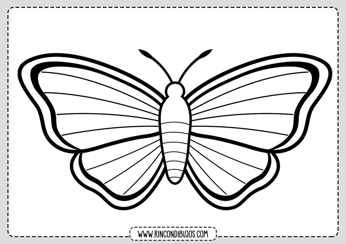 Dibujo Mariposa Para Colorear