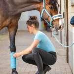 Leggins de equitación Dana