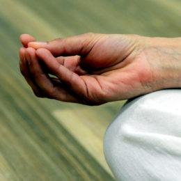 Cursos, talleres y actividades de El Rincón de Mindfulness