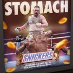 IBF/WBA/WBO heavyweight titlist Andy Ruiz
