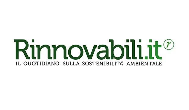 Certificazione CasaClima per Le Albere di Renzo Piano  Rinnovabili