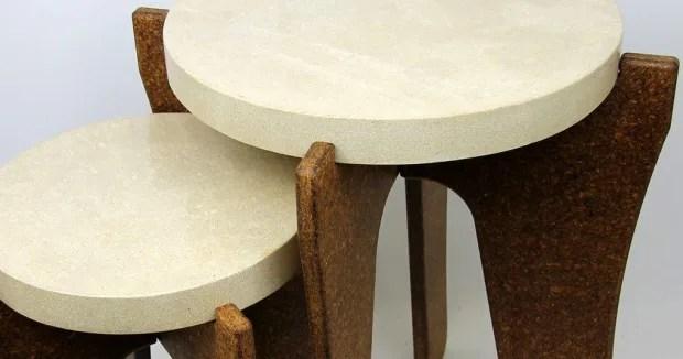 Ecodesign, da funghi e batteri gli eco-mobili autopulenti