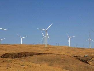 Anheuser-Busch acquista energia pulita dall'eolico EGP