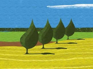 Economia circolare e sostenibilità Lucart a Ecomondo