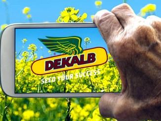 Agricoltura Dekalb Smart, digitalizzazione e sostenibilità