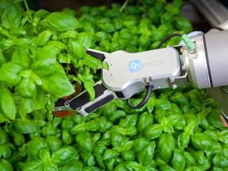 OnRobot spiega i vantaggi degli strumenti robotici
