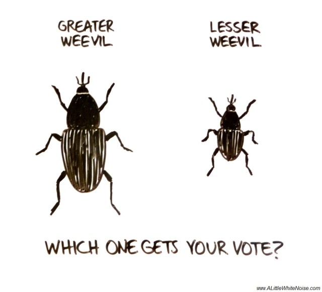 The Lesser of Two Weevils, by White Noise.