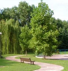 verde-pubblico-e1371053421905