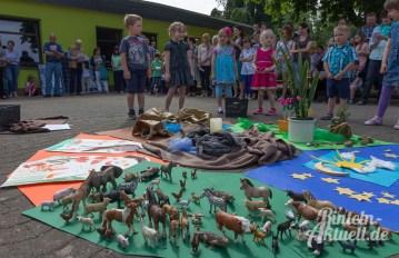 05 rintelnaktuell comenius kindergarten bibelwoche solaranlage