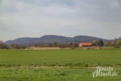 02 rintelnaktuell kohlenstaedt archeologie ausgrabungen windkraftanlagen vorbereitung bau boden knochenfund windrad