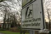 """Entwicklungen um Orkan """"Friederike"""": Blumenwall und Gehweg an Hartler Straße als Vorsichtsmaßnahme gesperrt"""