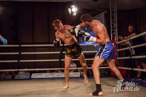 23 rintelnaktuell vorprogramm abend kickboxen frauenboxen profiboxen piergiulio ruhe sport brueckentorsaal boxring event waru kampf gegner runden