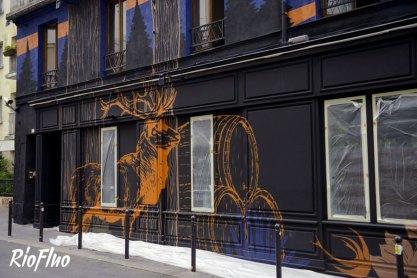 Riofluo-déco-graffiti-47