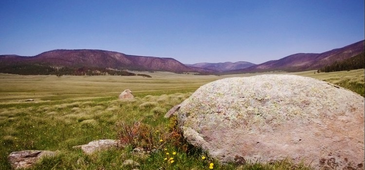 Transition at Valles Caldera