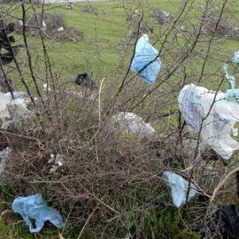 Photo of plastic bag litter