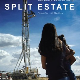 poster for the film split estate