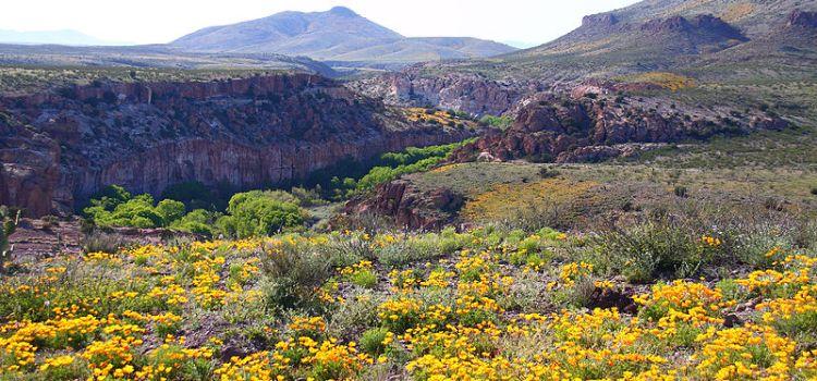 Sierra Trail Mix: Hike updates
