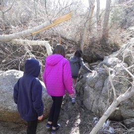 March 16 Excursiones report
