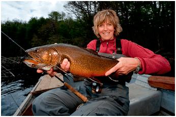 big brook trout