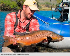 Fall Limay River brown
