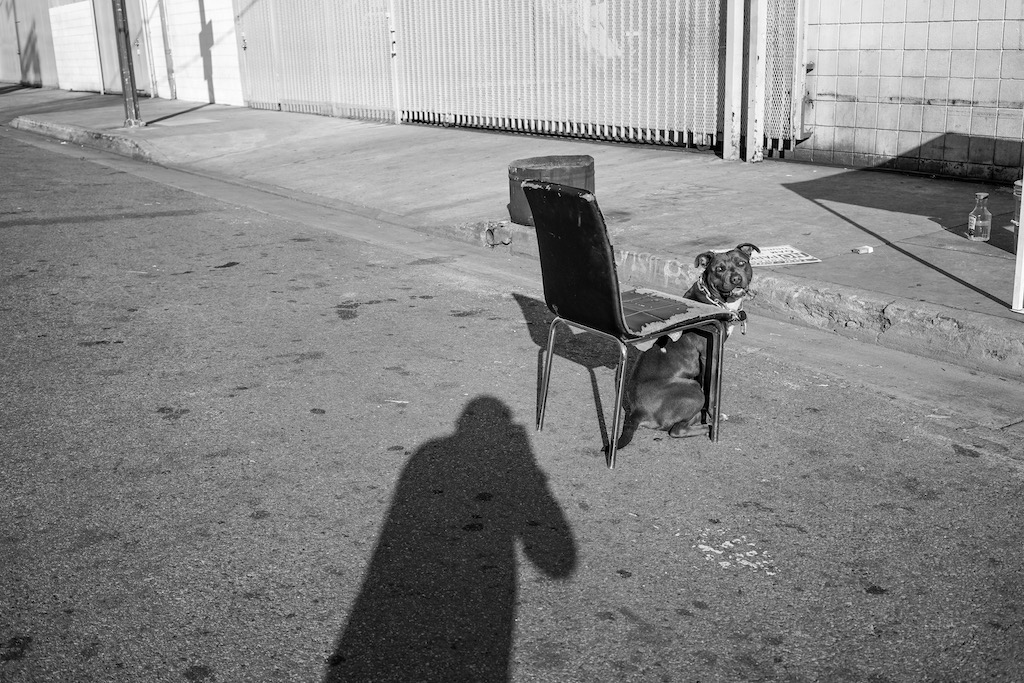 """Suitcase Joe, Skid Row Photographer. Check out his column, """"That Evening Sun,"""" at Riot Material Magazine."""